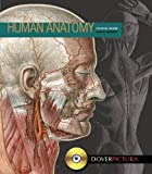 Human Anatomy (Dover Pictura Electronic Clip Art)