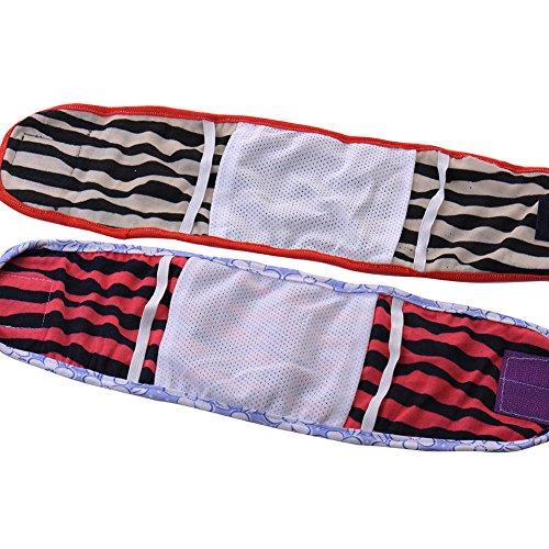 Pet Dog Puppy Cotton Underwear Physiological Pants(SIZE L)