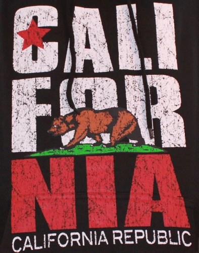California Flag Vintage Retro Text Asst Colors Hoodie 2