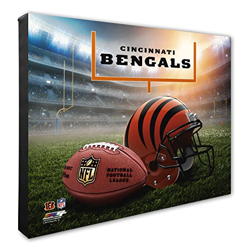 "Photo File NFL Cincinnati Bengals Helmet & Stadium High Resolution Canvas, 20"" x 24"", Multicolor"