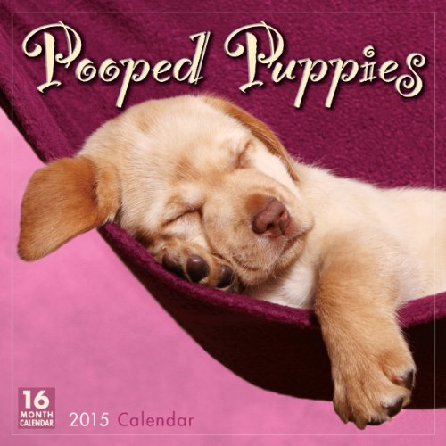 Pooped Puppies 2015 Wall Calendar