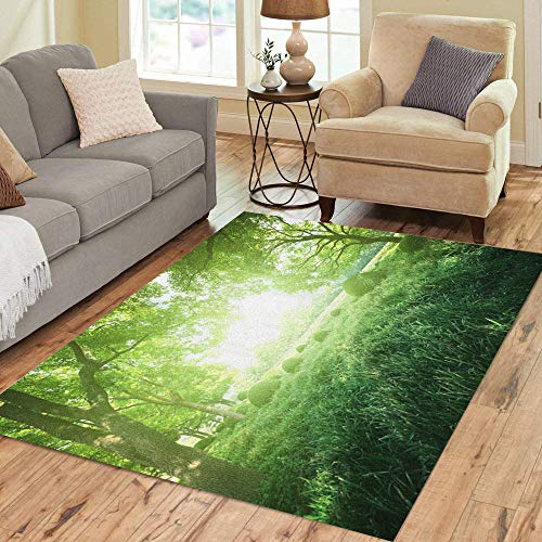 Pinbeam Area Rug Green Forest Sunny Day in Summer Park Blue Home Decor Floor Rug 5' x 7' -
