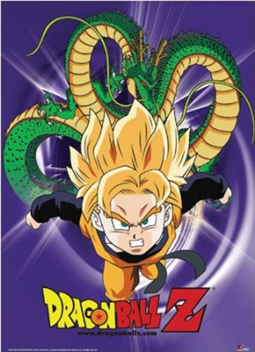 Dragon Ball Z Gohan Costume (Dragon Ball Z: Super Saiyan Gohan Anime Wall Scroll)