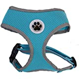 Turquoise Reflective Mesh Soft Dog Harness Safe Harness No Pull Walking Pet Harnesses for Dogs, XLarge