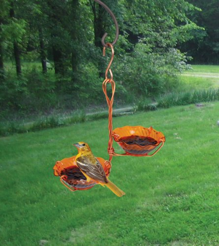 Songbird Essentials Copper Oriole SEHHORDC