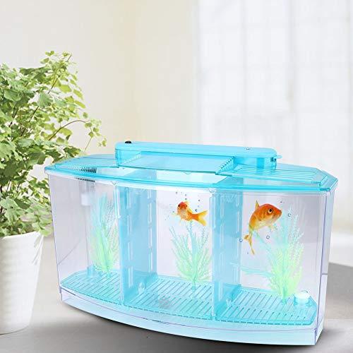 Isolatie aquarium, mini kweek aquarium kleine vis isolatie aquarium, hoge doorlaatbaarheid groot formaat voor kleine…