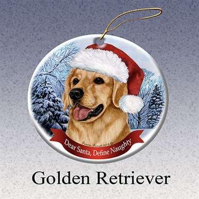 Amazon.com: Holiday Pet Gifts Golden Retriever Santa Hat Dog ...