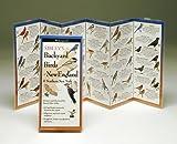 Steven M. Lewers & Associates Sibley's Backyard Birds of The Northeast offers