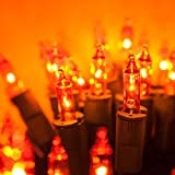 PureLock Amber/Orange Halloween String Lights - Christmas String Lights - Mini Christmas Lights, Green Wire (50 lights, 25 ft)