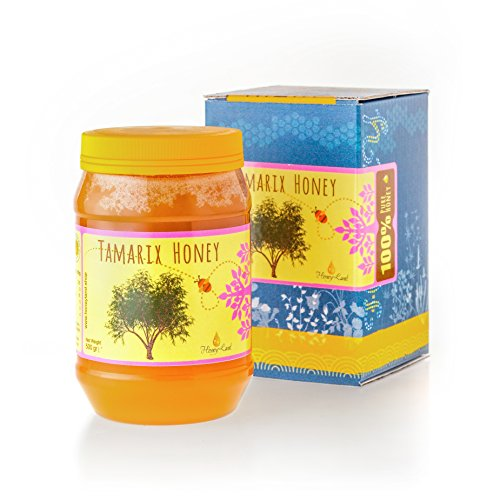 (Honey Land 100% Pure Raw Organic Unheated Tamarisk Honey From the Nectar of Tamarisk Flowers in the Mediterranean Unique Taste Delicious with Fruit Cheese & Meat Dishes Convenient 17.6 oz Plastic Jar)