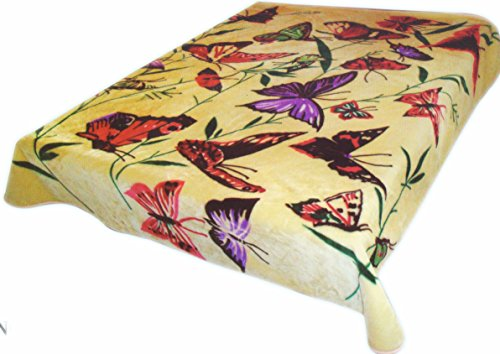 Brand New! 5 Lbs Butter Fly Print Soft Queen Korean Style Mink Blanket