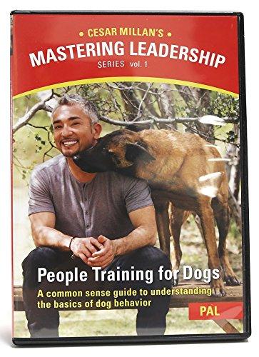Cesar Millan Dog Training Dvd Reviews
