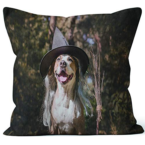 (Nine City Cute Dog with Broomstick Dressed up for Halloween as Friendly Forest Witch Throw Pillow Cushion Cover,HD Printing Decorative Square Accent Pillow)