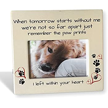 Amazon.com: DOG MEMORIAL PICTURE FRAME: Always Remembered - Forever ...