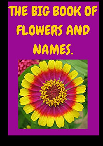 Flowers And Names Flowers Types Names And Pictures Kindle