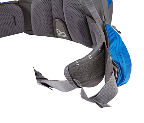 Thule Sapling Child Carrier, Slate/Cobalt by Thule (Image #6)