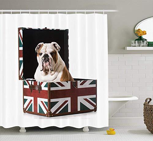 PAUSEBOLL English Bulldog Cute Bulldog Sitting in Union Jack Britain Themed Box Patriotic Design Cloth Multicolor Shower Curtain Bathroom Hooks,Mildew Resistant Waterproof Polyester Curtain
