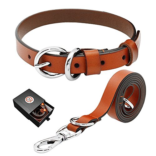 PET ARTIST Luxury Genuine Leather Dog Collar and Leash Set Extra Soft for Puppy Small Medium Large Breed Dogs - Pet Set Leash Dog Collar
