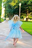 Girls Butterfly Fairy Wings for Kids, Birthday
