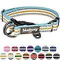 Blueberry Pet 15 Colors 3m Reflective Multi Colored Stripe Adjustable Dog Collar Pastel Blue And Beige Large Neck 18 26