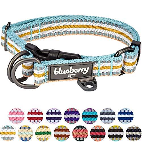 Blueberry Pet 15 Colors 3m Reflective Multi Colored Stripe Adjustable Dog Collar Pastel Blue And Beige Large Neck 18 26