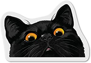 WIRESTER Fridge Magnet Decoration for Kitchen Refrigerator, Black Bombay Kitten Cat