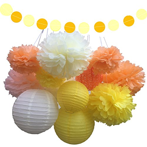 Fonder Mols 18 Pack Tissue Pom Poms Flowers Paper Lanterns And Polka Dot Paper Garlands For Spring Wedding Ball Party Decorations