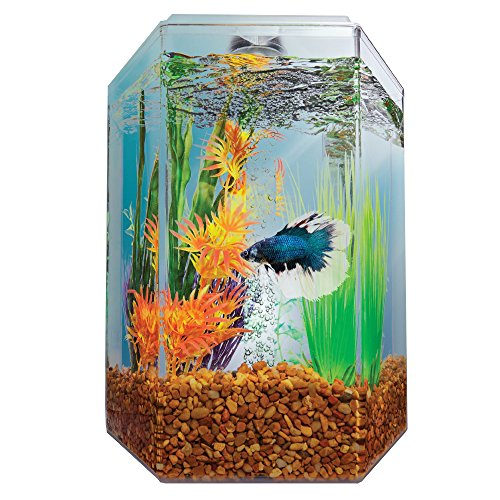 Imagitarium 1.7 Gallon Hexagonal Aquarium by Imagitarium