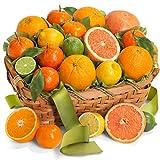 Golden State Fruit Sweet Sunshine Citrus Fruit Gift Basket