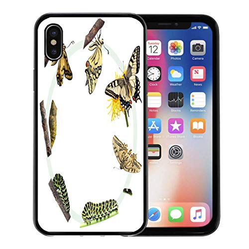 Swallowtail Life Cycle - Semtomn Phone Case for Apple iPhone Xs case,Green Caterpillar Life Cycle of The Swallowtail Butterfly Metamorphosis Evolution for iPhone X Case,Rubber Border Protective Case,Black