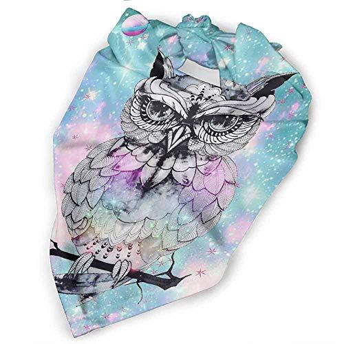 (Dog Bandana,Beautiful Owl Washable Dog Bandanas Square Plaid Printing Dog Kerchief Set)