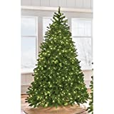7.5 ft. Indoor Pre-Lit LED Downswept Douglas Fir Artificial Christmas Tree