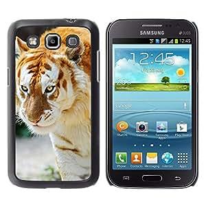 EJOY---Cubierta de la caja de protección la piel dura para el / Samsung Galaxy Win I8550 / --Tigre Albino