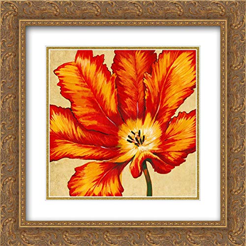 Parrot Tulip II 20x20 Gold Ornate Frame and Double Matted Art Print by Otoole, Tim