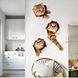 Liobaba 3D Wall Decals Stickers Vivid Decors Murals (Cat) for Room Home Removable Wall Art Decals Wall for kids Rooms DIY Home Decoration