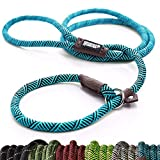 Best Dog Leash For Pullings - Friends Forever Extremely Durable Dog Rope Leash, Premium Review