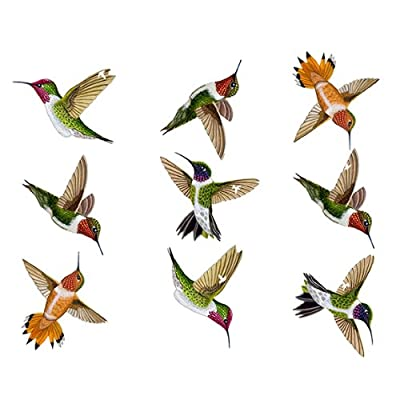 Wild Life Animals Realistic Painted Hummingbird Wall Decals