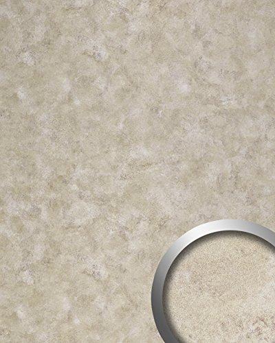 Panel Vintage Iron (Wall panel vintage look WallFace 19209 IRON AGE smooth Design Panelling metal look glossy self-adhesive abriebfest platinum beige 2,6 m2)
