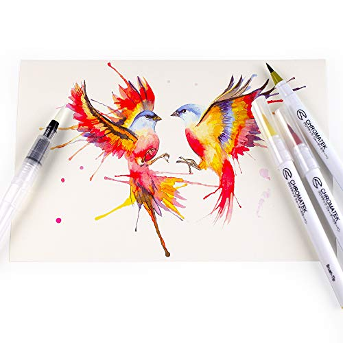 52 Watercolor Brush Pens, Tutorial Pad & Video Series by Chromatek. Real Brush Tip. Vivid. Smooth. Blendable. Long Lasting. Professional Artist Quality. 50 Colors 2 Blending Brushes. by Chromatek (Image #5)