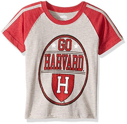 NCAA Boys Raglan Short Sleeve Stripe Tee,Harvard Crimson,Red,6