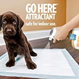 OUT! Go Here Attractant Indoor & Outdoor Dog