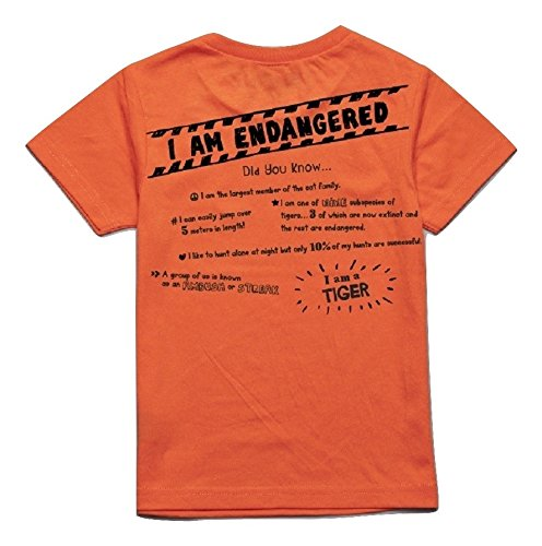Peek-A-Zoo Toddler Short Sleeve Tshirt - Tiger Orange - 5T by Peek-A-Zoo (Image #2)