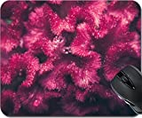 MSD Mousepad Mouse Pads/Mat design 29952827 Celosia or Wool flowers or Cockscomb flower in the garden or nature park vintage