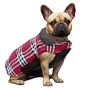 WOOCE Chaqueta Perro Abrigo Perro Invierno Ropa Lindo Escoces Acolchado para Perro Pequeño y Mediano