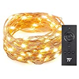 TaoTronics TT-SL005 33 ft 100 LED String RF Remote Control, Super Soft Copper Wire Waterproof Outdoor and Indoor Decorative Lights for Bedroom, Patio, Garden, Gate, Yard, and More