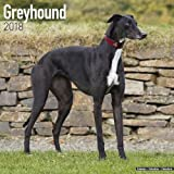 Greyhound Calendar - Dog Breed Calendars - 2017 - 2018 wall Calendars - 16 Month by Avonside