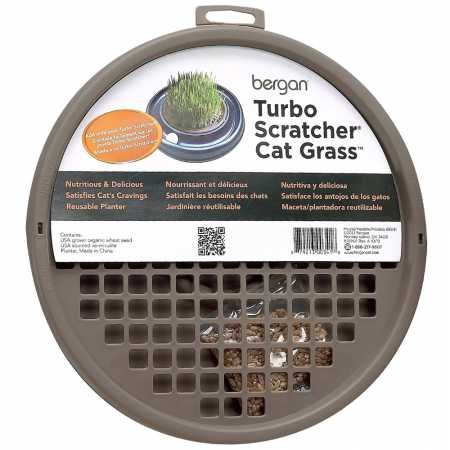 (Bergan Turbo Scratcher Star Chaser Cat Grass)