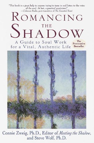 Romancing the Shadow: A Guide to Soul Work for a Vital, Authentic Life (Journal Shadows)