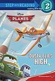 Planes Step into Reading Book (Disney Planes), Susan Amerikaner, 0736481192