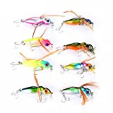 10pcs bee Popper Insect bait fishing lures plastic Review and Comparison